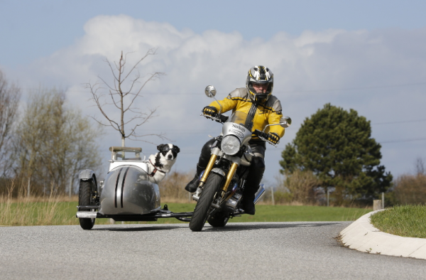 Sauer Leaner Dog Pet Sidecar