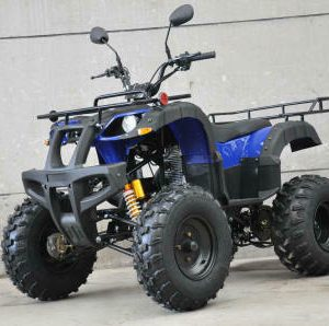4 Wheeler Quad Motorcycle Dirt Bike for Sale